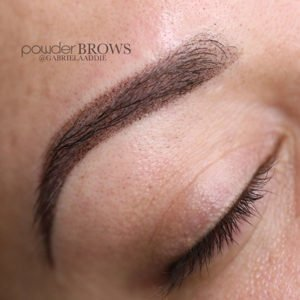 PowderBrows Training